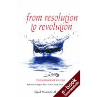 From Resolution to Revolution - Downloadable Version (EPUB and MOBI)
