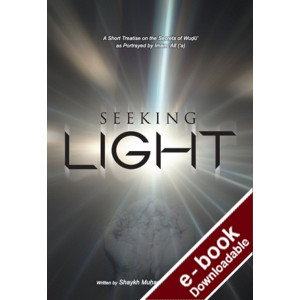 Seeking Light: An Enlightening Perspective on the Concept of Wudu' - Downloadable Version (EPUB and MOBI)